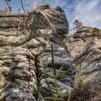 Felsengruppe Drei Zwerge - Westseite