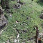 Am Meraner Höhenweg - 1000-Stufen-Schlucht