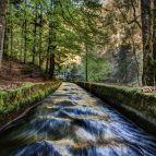 Reschbachkanal in der Buchberger Leite (Naturpark Bayerischer Wald)