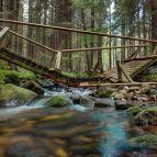 Brücke über denSchwarzbach