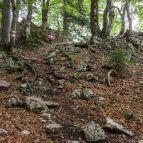 Hochstaufen - Steig am Bergkamm