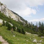 Hochstaufen - Abstieg auf dem Normalweg, Bartlmahd