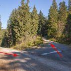 Abzweigung zum Osser-Südgrat - Hier den markierten Wanderweg verlassen!!