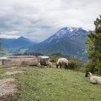 Aufstieg zur Peter-Wiechenthaler-Hütte