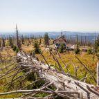 Hinab zum Waldschmidthaus (Tour 2, Variante)