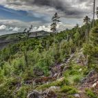 Hochwalddistriktsteig - Nationalpark Bayerischer Wald