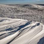 Lusengipfel - Nationalpark Bayerischer Wald