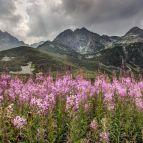 Hohe Tatra - Blick zum Jahnacki stit und Kozi stit