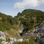 Gipfelbereich Traunstein