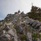 Aufstieg Naturfreundesteig