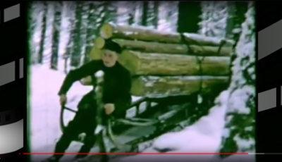 Alte Bayerwaldfilme *